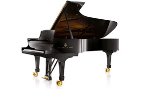 Acoustic Piano, Acoustic pianos