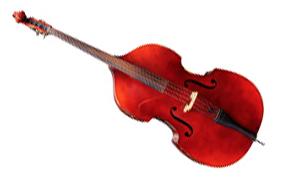 Schmitt Music String Bass - String Shop