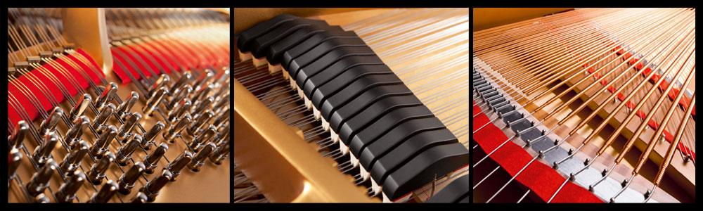 Acoustic Pianos at Schmitt Music