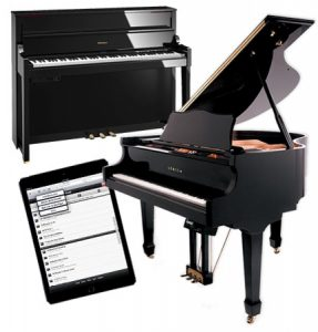 Roland digital piano, grand player piano with QRS ipad