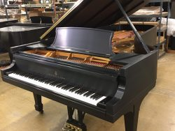 Used Stienway Model D Grand Piano