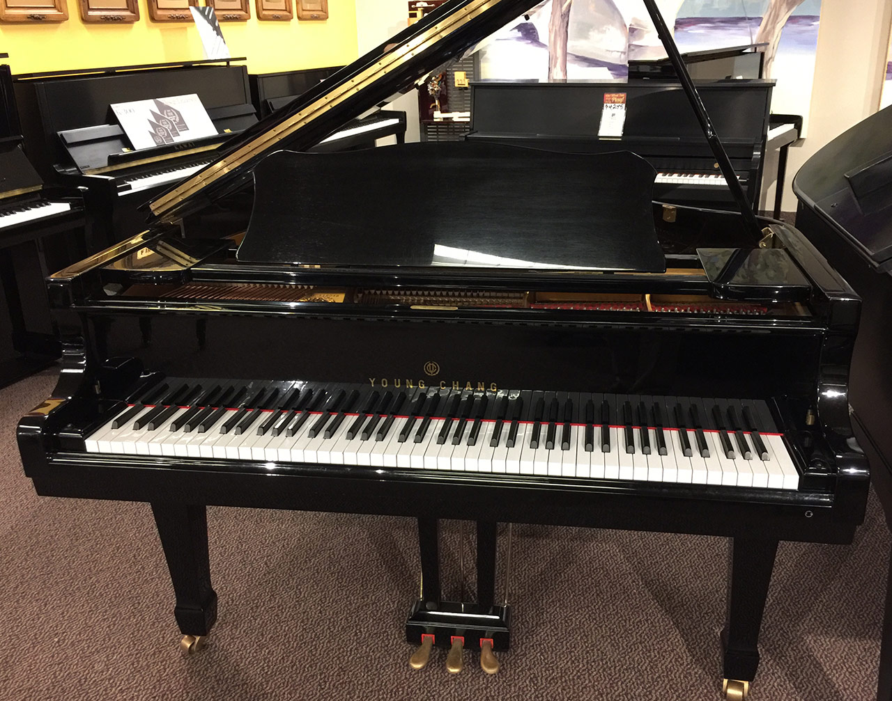 "Used Young Chang 5'9"" Ebony Polish Grand Piano"