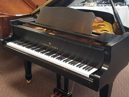 "Used Young Chang G157 5'2"" Ebony Satin Baby Grand Piano"