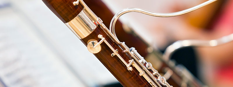What in the World is a Bassoon? By Stephen Strate