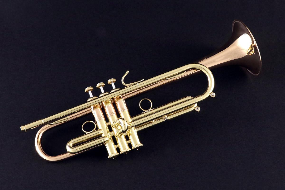 Bb Trumpet | Bach LT190L1B